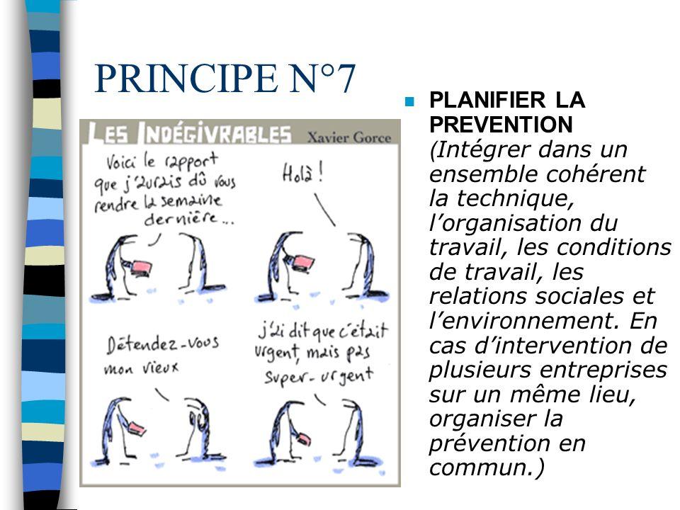 PRINCIPE N°7