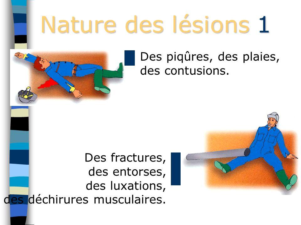 Nature des lésions 1 Des piqûres, des plaies, des contusions.