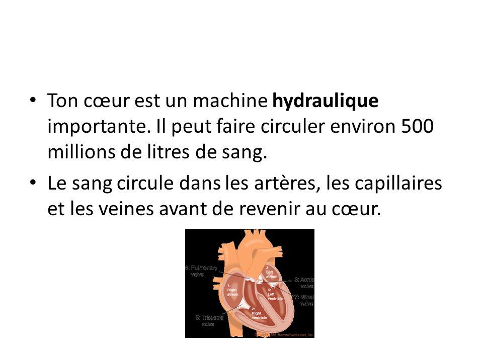 Ton cœur est un machine hydraulique importante