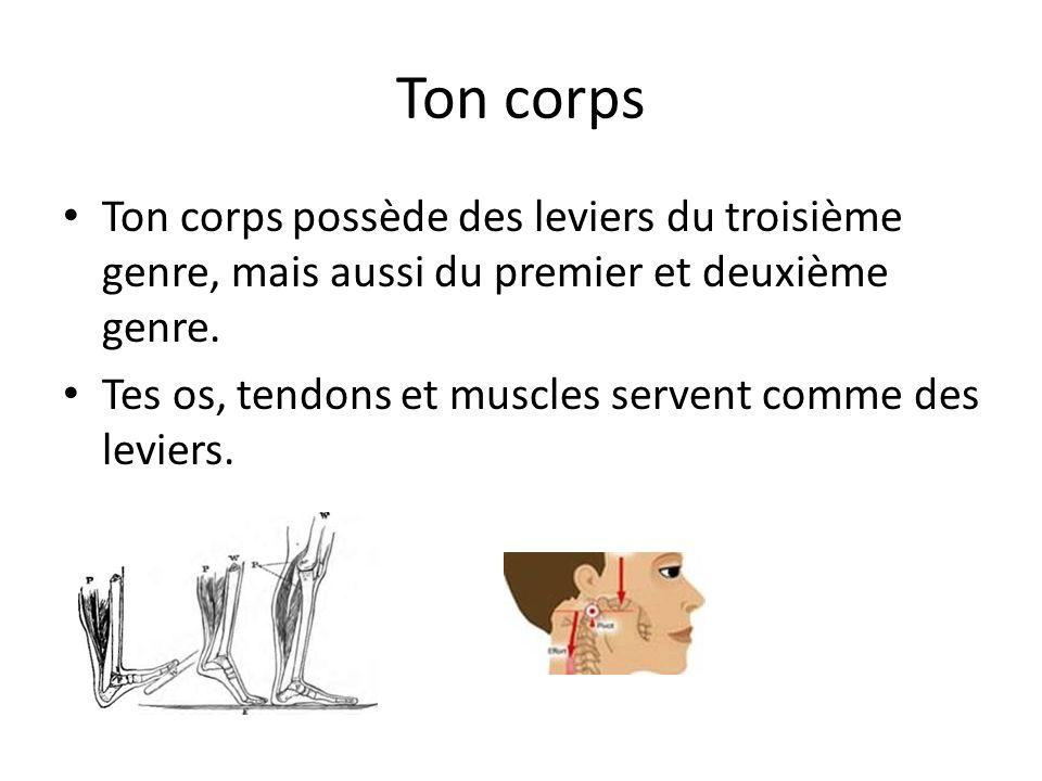 Ton corps Ton corps possède des leviers du troisième genre, mais aussi du premier et deuxième genre.