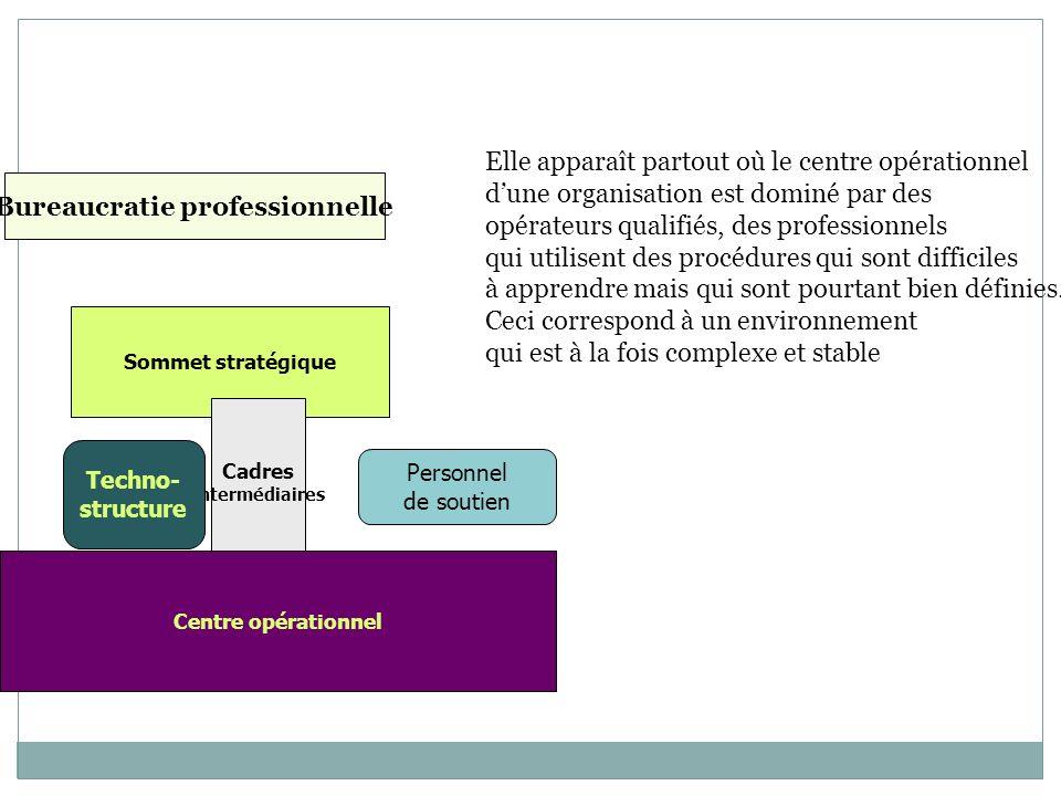 Bureaucratie professionnelle Cadres intermédiaires