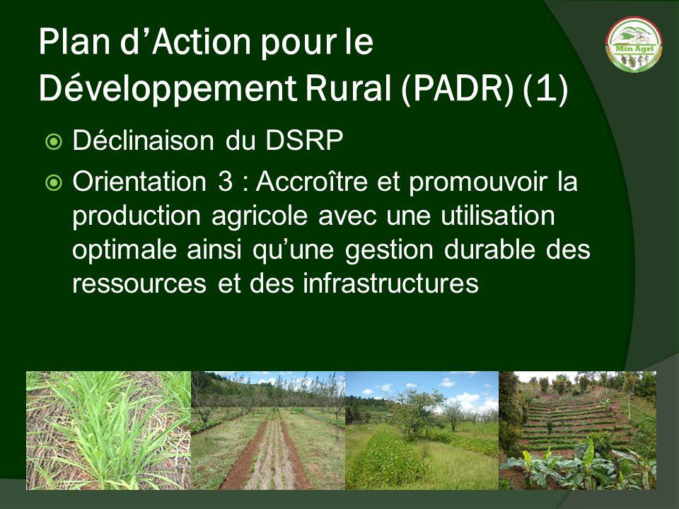 Plan d'Action pour le Développement Rural (PADR) (1)