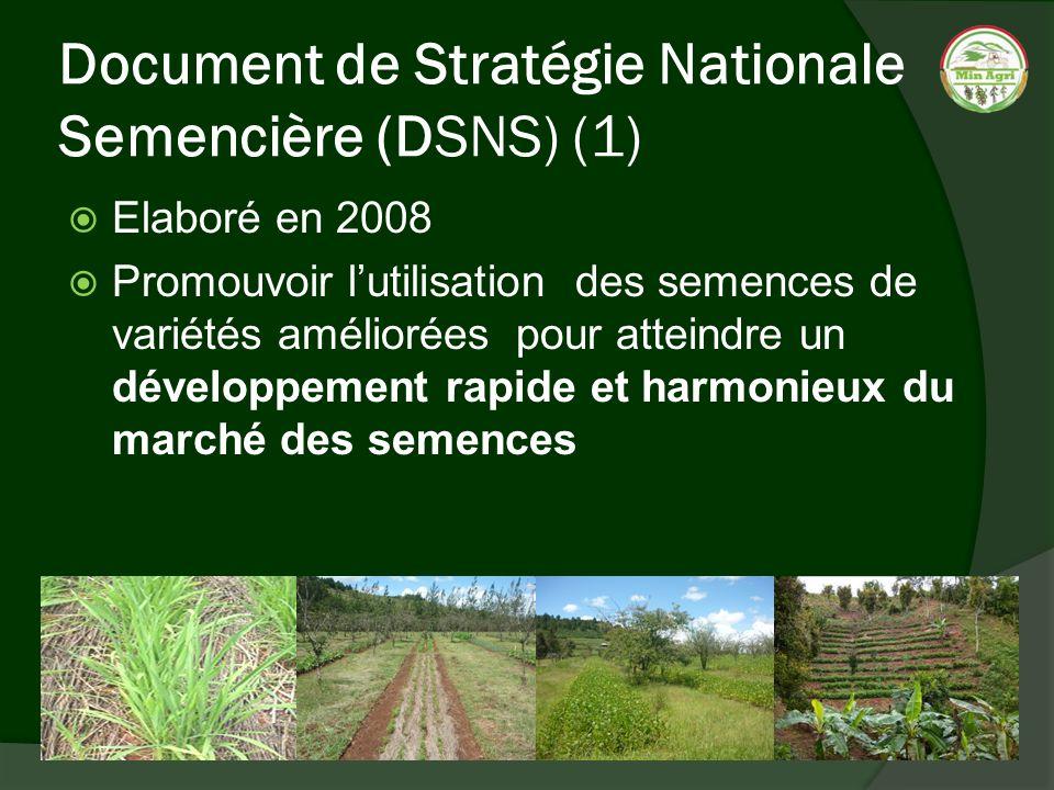 Document de Stratégie Nationale Semencière (DSNS) (1)