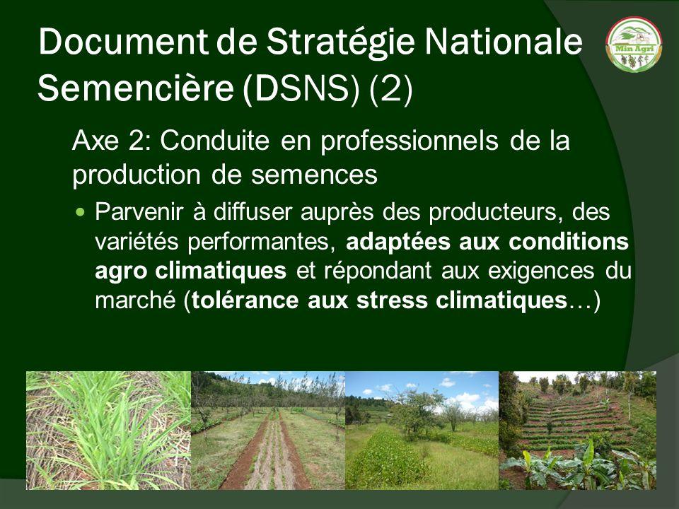 Document de Stratégie Nationale Semencière (DSNS) (2)