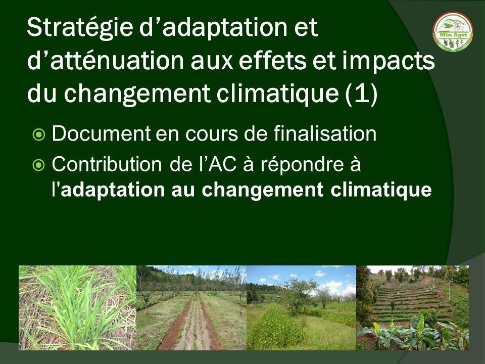 Stratégie d'adaptation et d'atténuation aux effets et impacts du changement climatique (1)