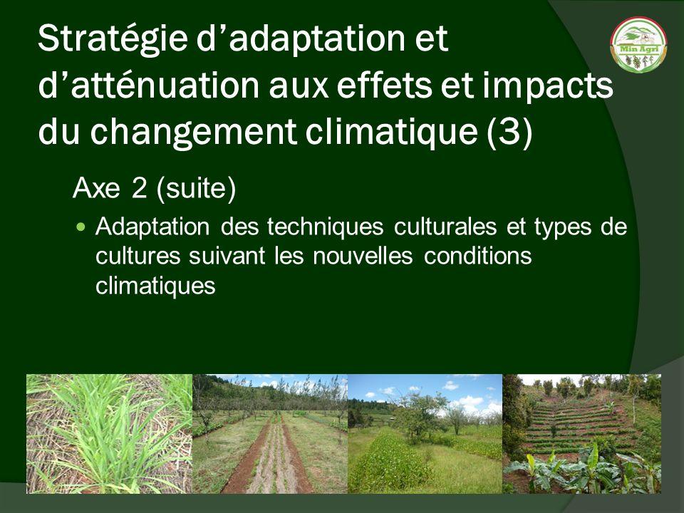 Stratégie d'adaptation et d'atténuation aux effets et impacts du changement climatique (3)