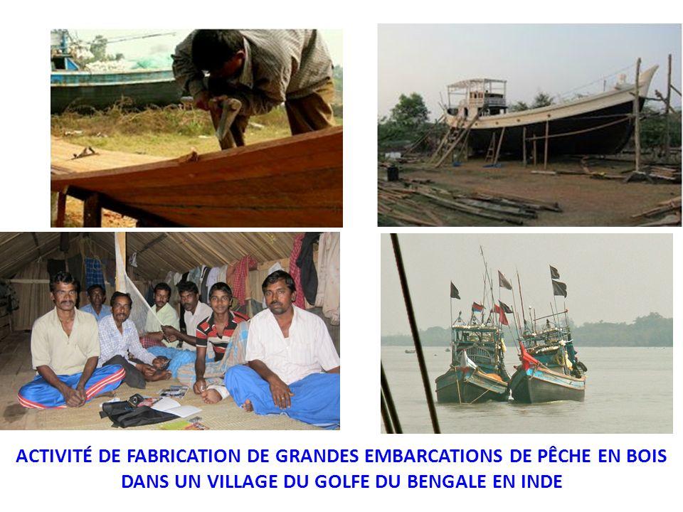 ACTIVITÉ DE FABRICATION DE GRANDES EMBARCATIONS DE PÊCHE EN BOIS