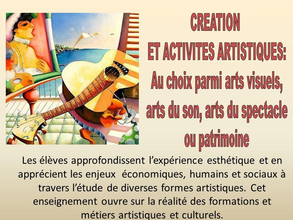 ET ACTIVITES ARTISTIQUES: Au choix parmi arts visuels,