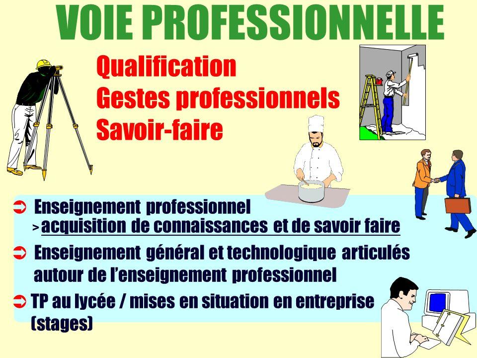 VOIE PROFESSIONNELLE Qualification Gestes professionnels Savoir-faire