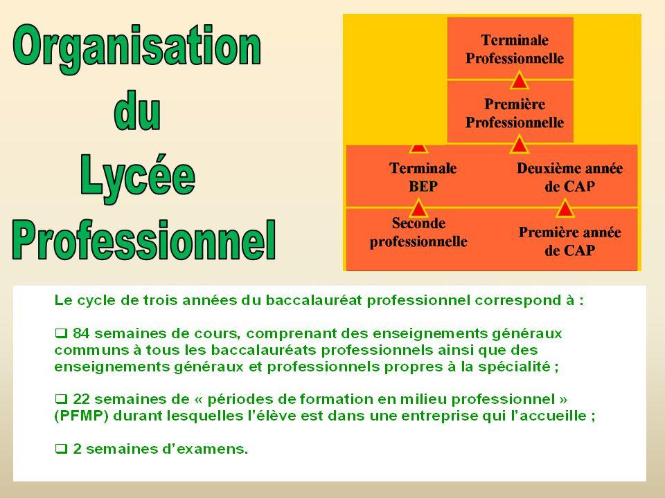 Organisation du Lycée Professionnel