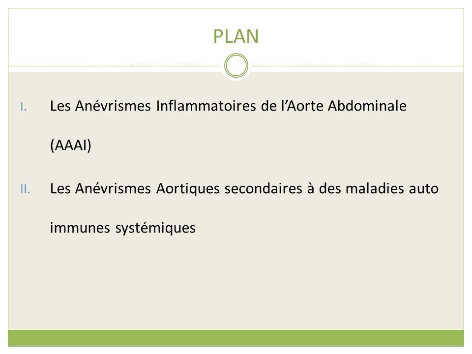 PLAN Les Anévrismes Inflammatoires de l'Aorte Abdominale (AAAI)