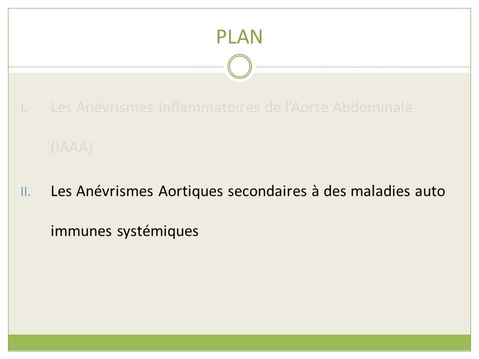PLAN Les Anévrismes Inflammatoires de l'Aorte Abdominale (IAAA)