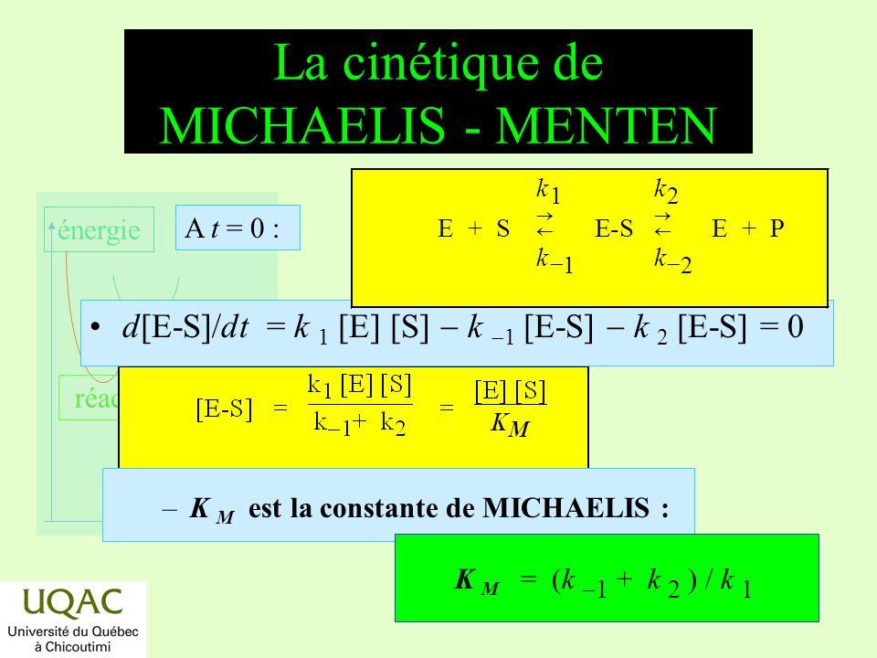 La cinétique de MICHAELIS - MENTEN