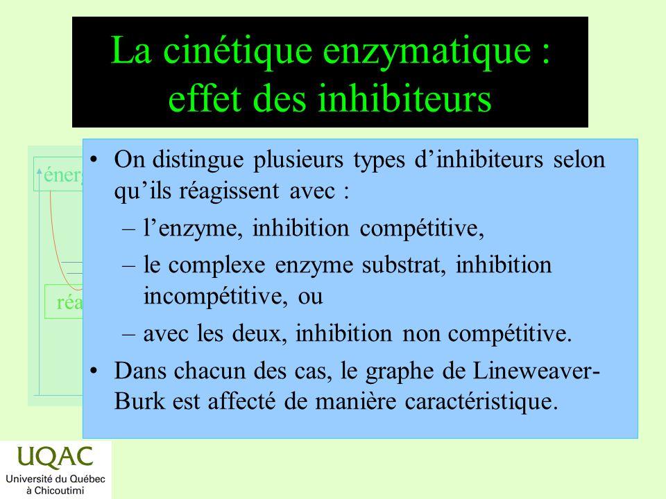 La cinétique enzymatique : effet des inhibiteurs