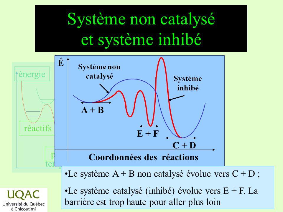 Système non catalysé et système inhibé