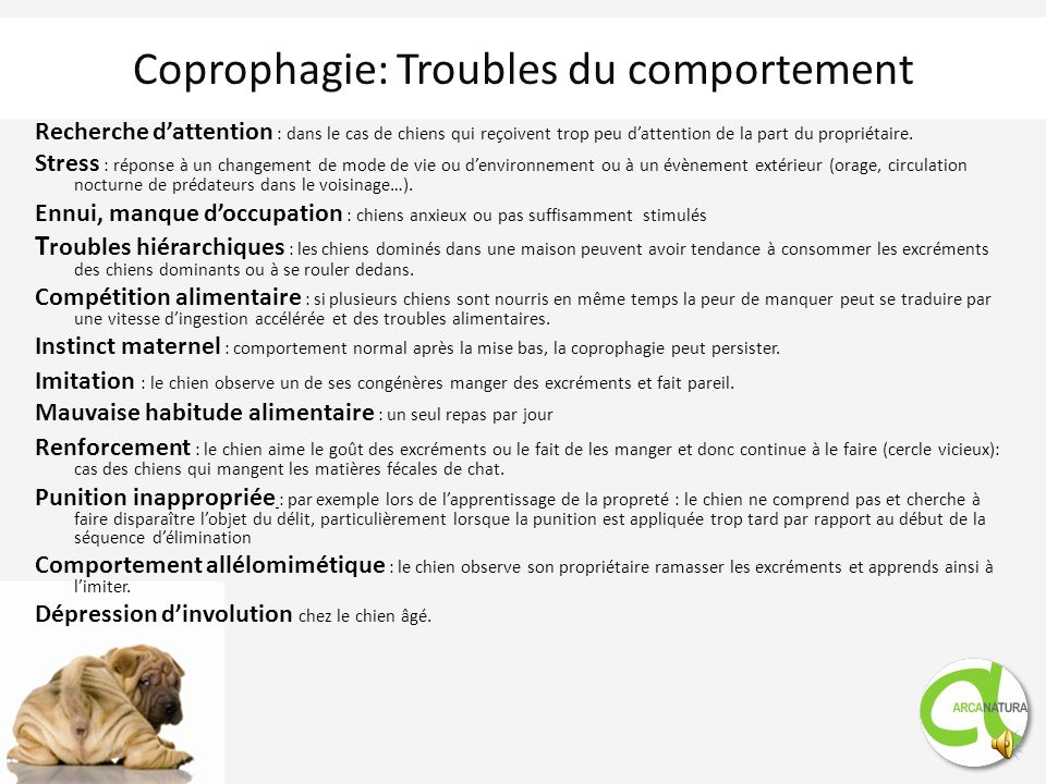 Coprophagie: Troubles du comportement