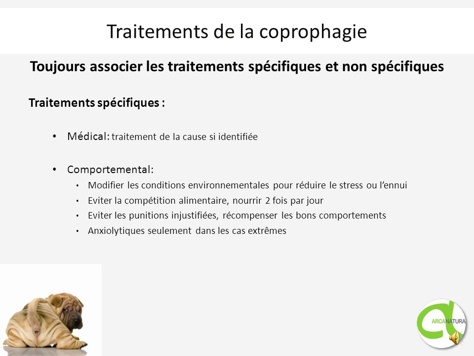 Traitements de la coprophagie