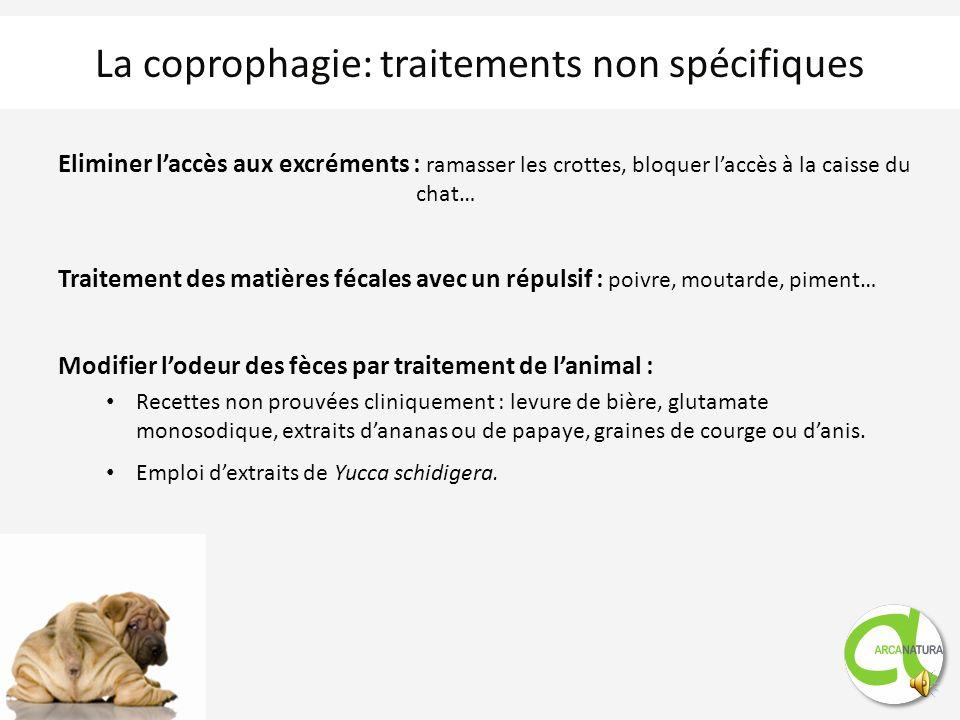 La coprophagie: traitements non spécifiques