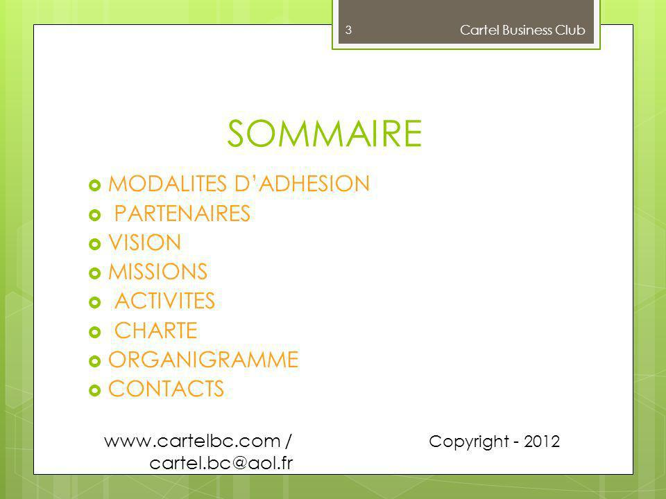 SOMMAIRE MODALITES D'ADHESION PARTENAIRES VISION MISSIONS ACTIVITES