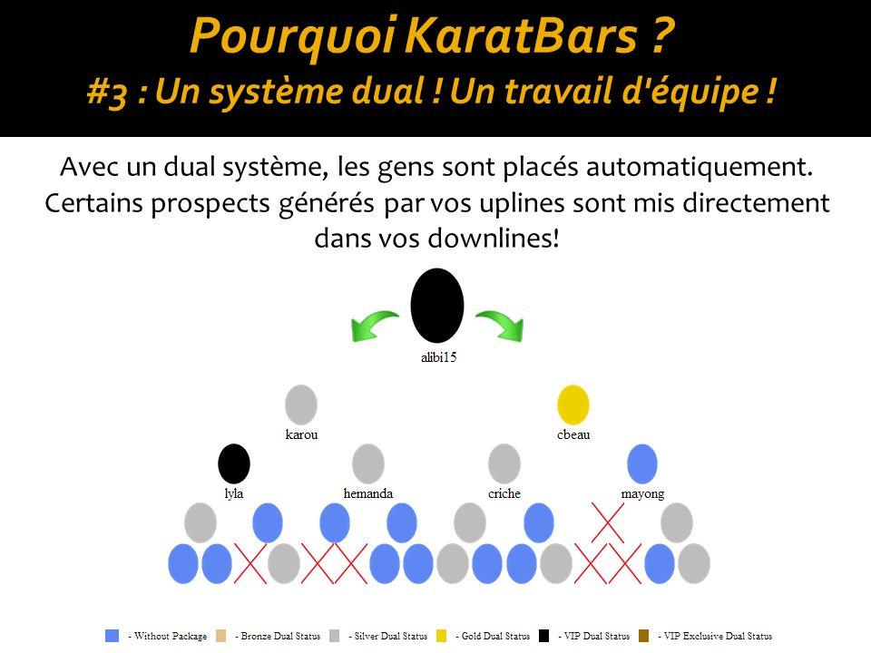 Pourquoi KaratBars #3 : Un système dual ! Un travail d équipe !