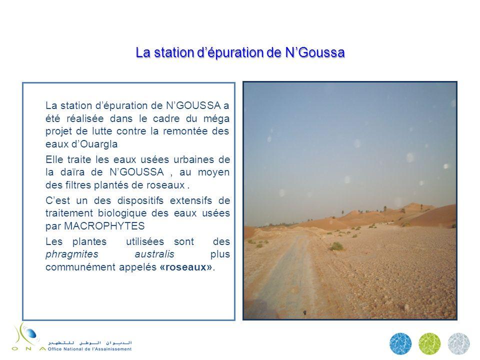 La station d'épuration de N'Goussa