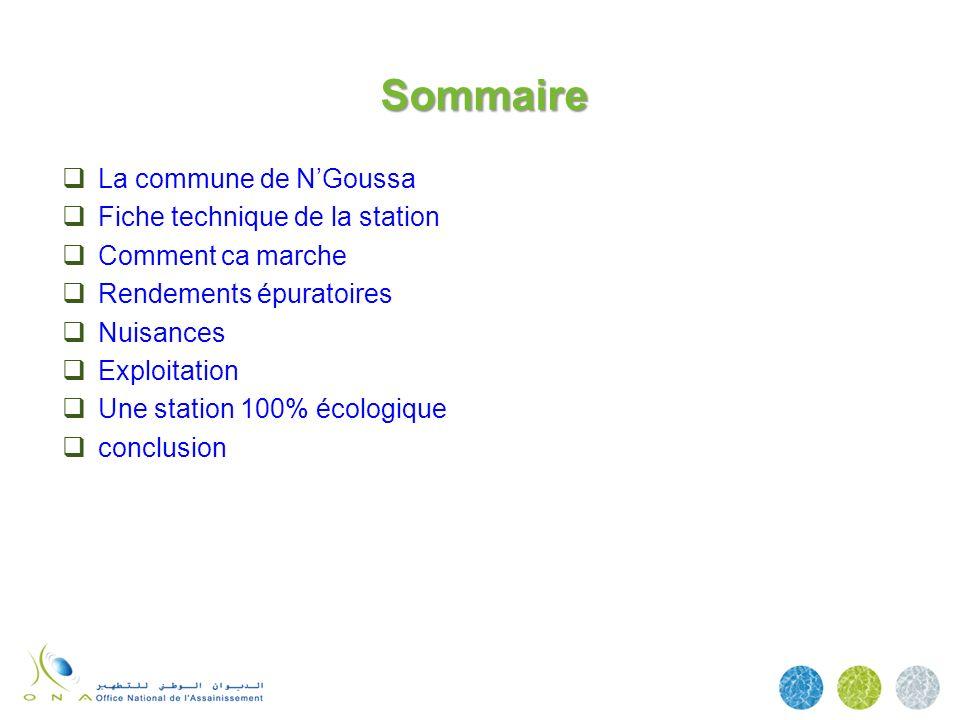 Sommaire La commune de N'Goussa Fiche technique de la station