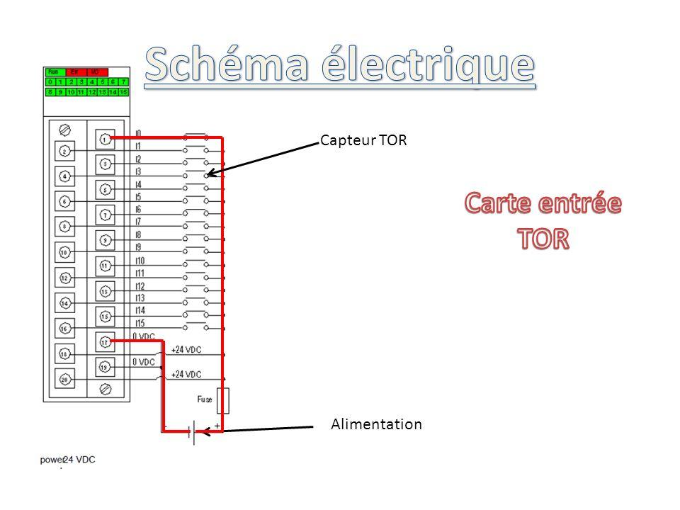 Schéma électrique Capteur TOR Carte entrée TOR Alimentation