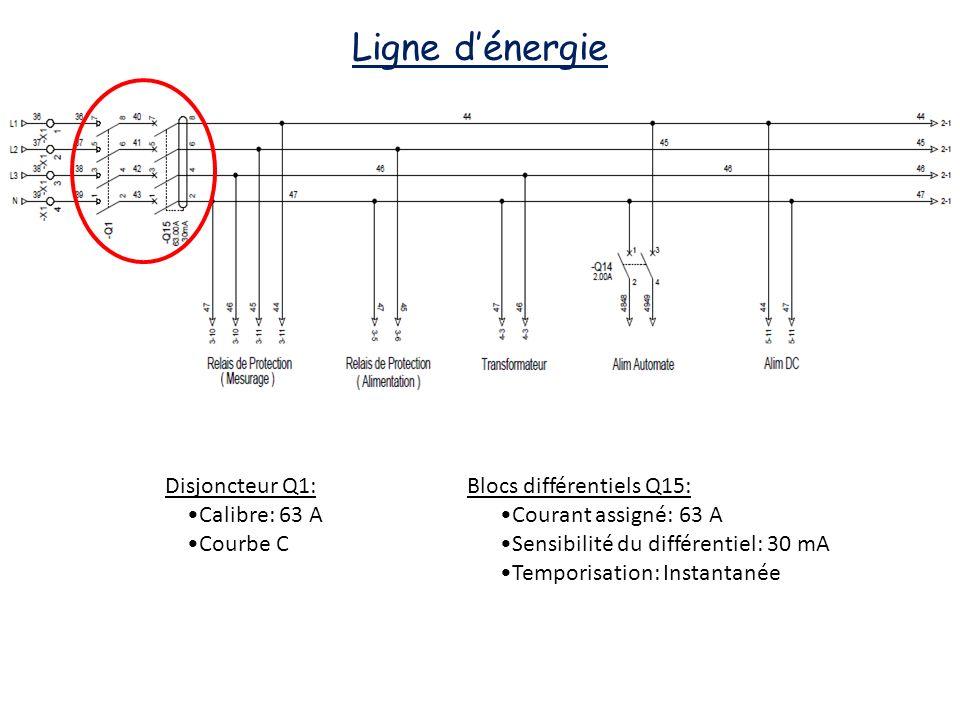 Ligne d'énergie Disjoncteur Q1: •Calibre: 63 A •Courbe C