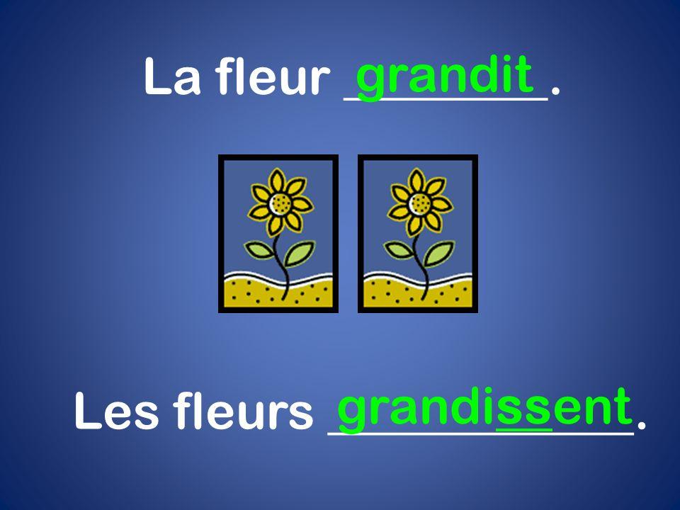 Les fleurs ____________.