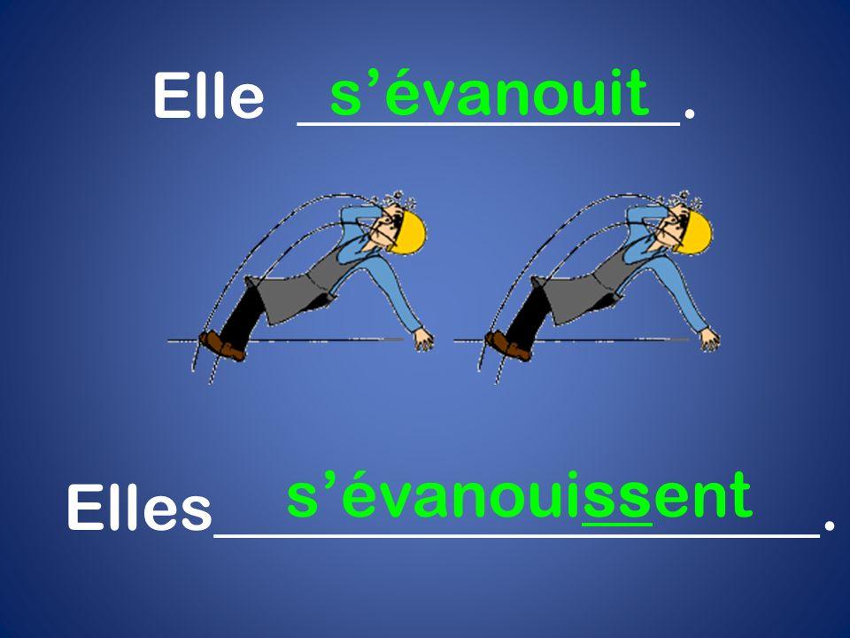 Elles___________________.