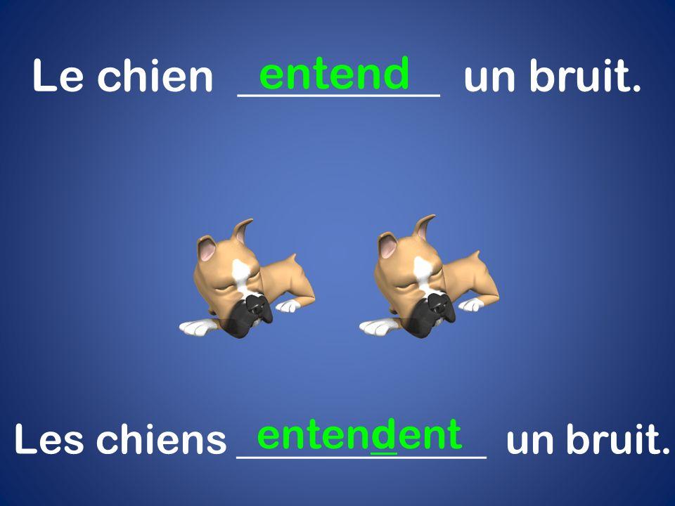 Le chien _________ un bruit. entend