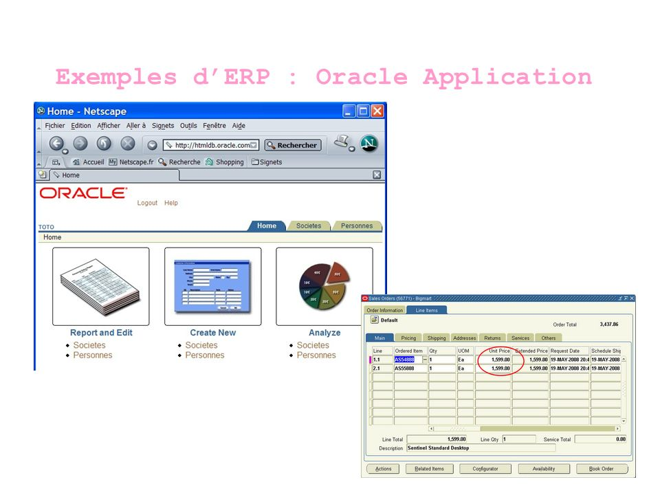 Exemples d'ERP : Oracle Application