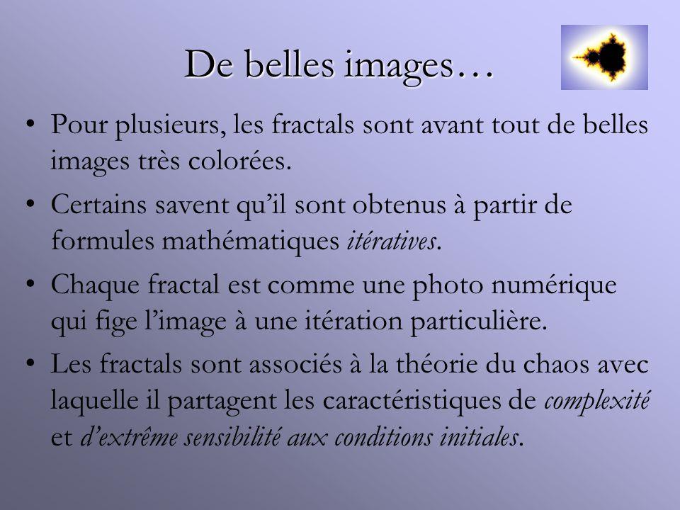 De belles images… Pour plusieurs, les fractals sont avant tout de belles images très colorées.