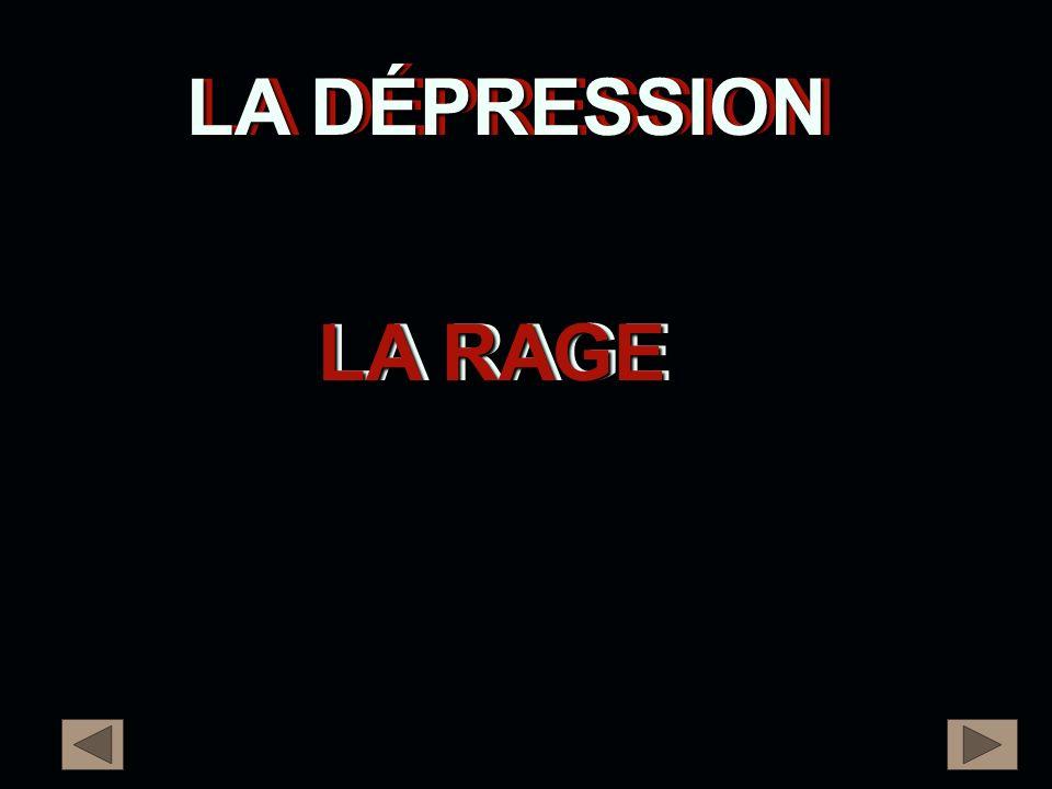 LA DÉPRESSION LA DÉPRESSION LA RAGE LA RAGE