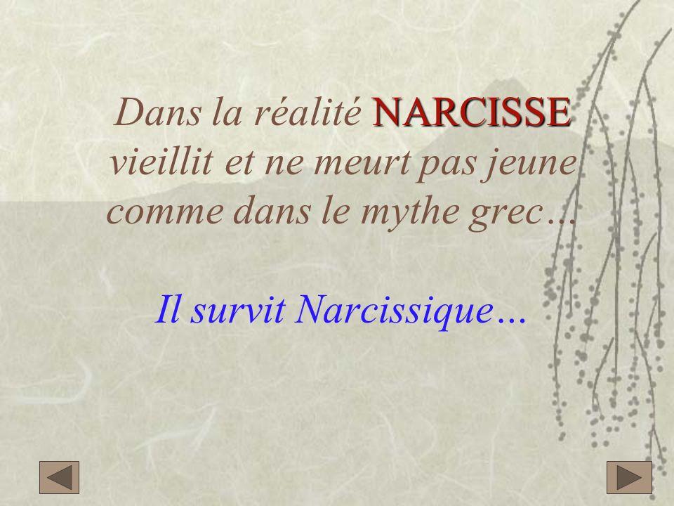 Dans la réalité NARCISSE vieillit et ne meurt pas jeune comme dans le mythe grec… Il survit Narcissique…