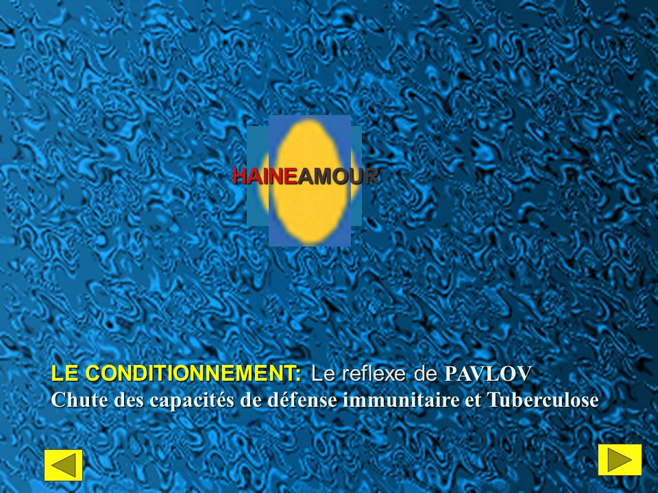 HAINEAMOUR LE CONDITIONNEMENT: Le reflexe de PAVLOV.