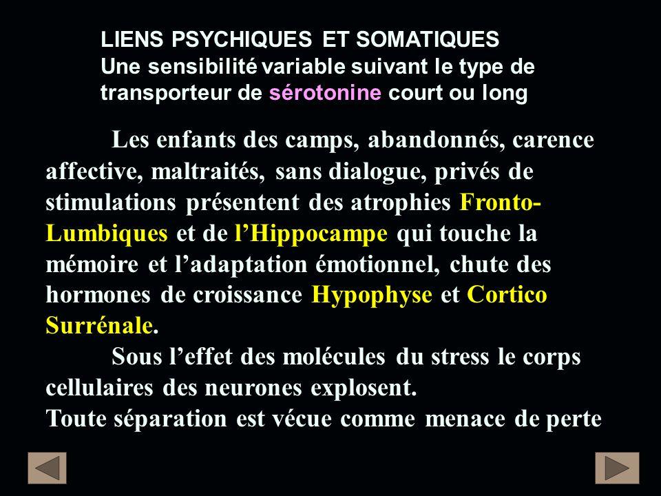 LIENS PSYCHIQUES ET SOMATIQUES