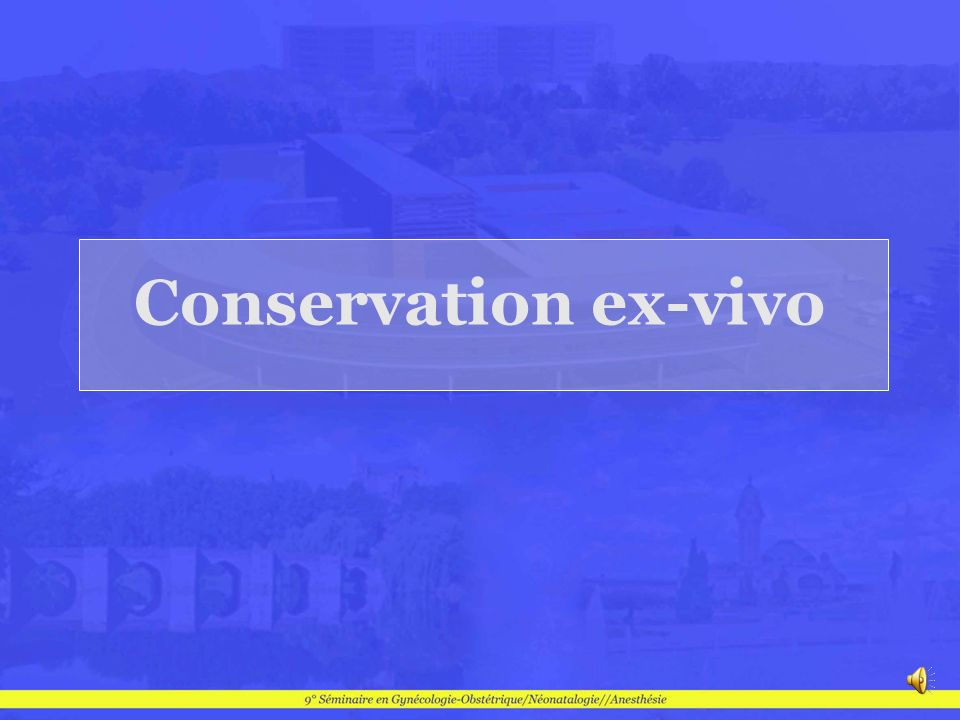 Conservation ex-vivo