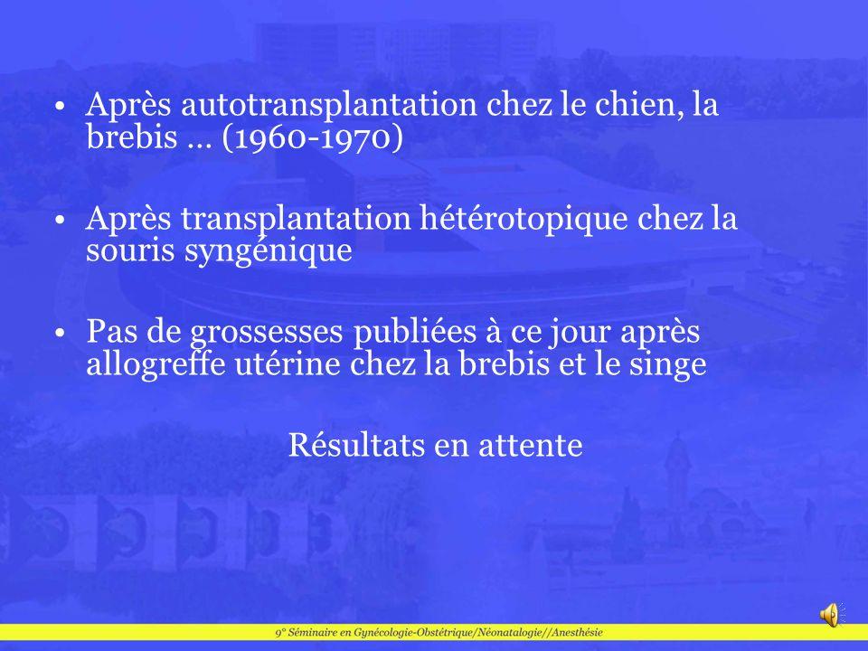 Après autotransplantation chez le chien, la brebis … (1960-1970)
