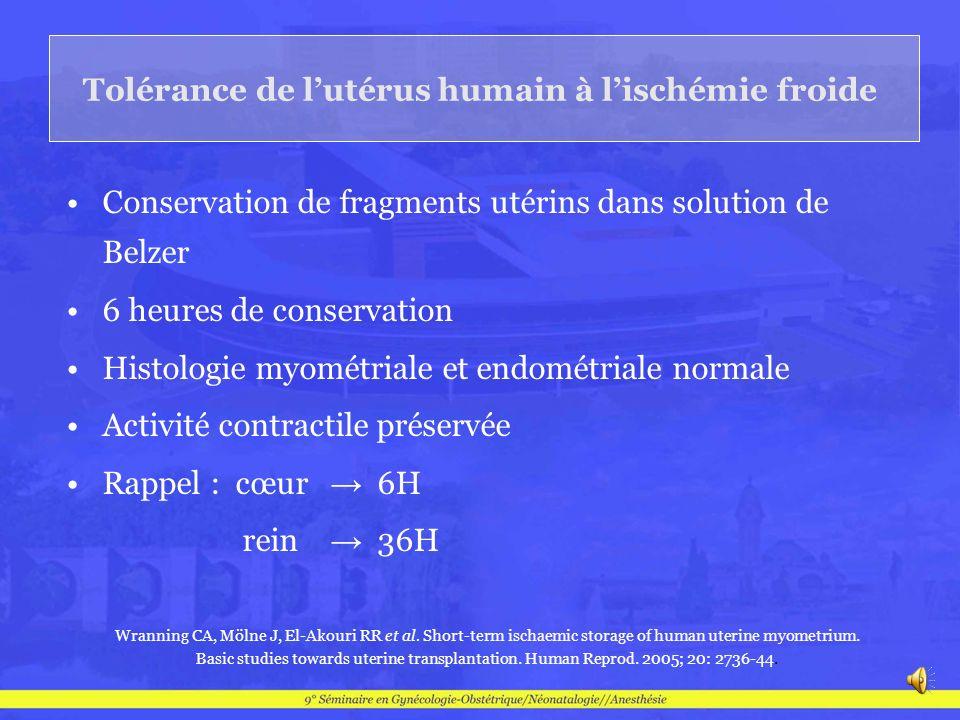 Tolérance de l'utérus humain à l'ischémie froide