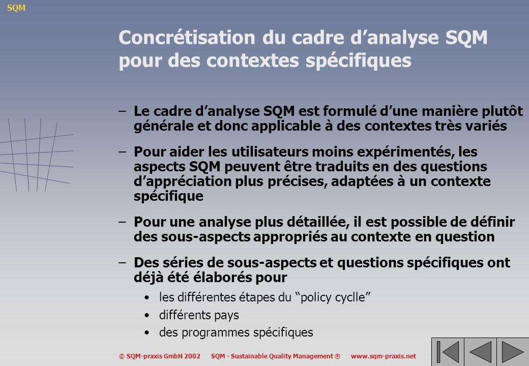 Concrétisation du cadre d'analyse SQM pour des contextes spécifiques