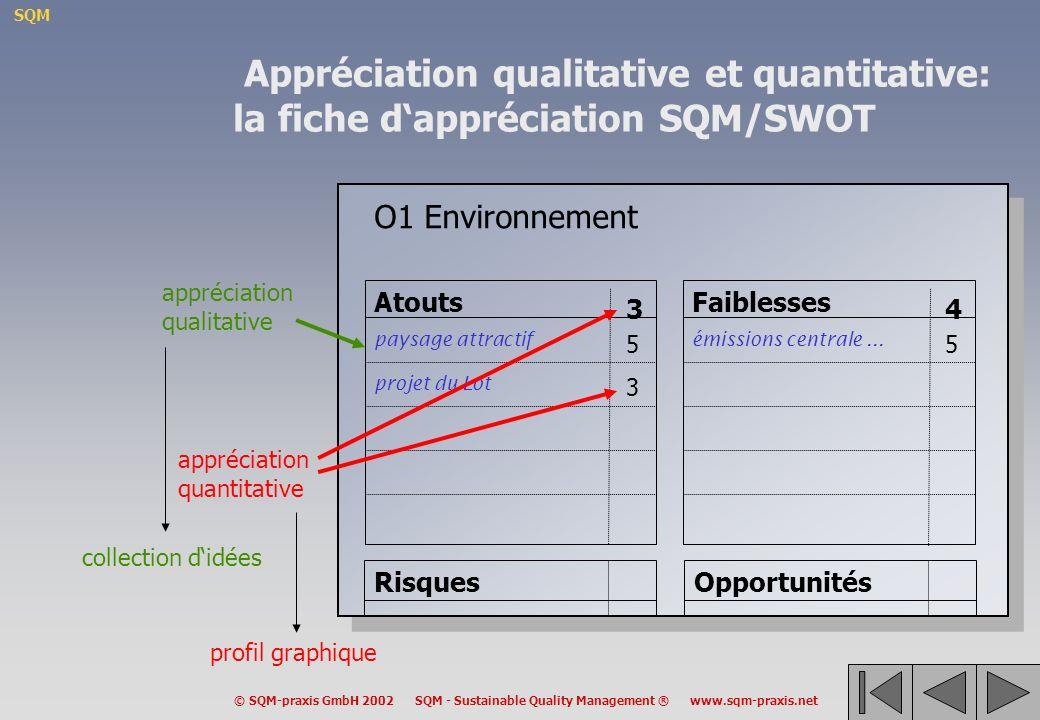 Appréciation qualitative et quantitative: la fiche d'appréciation SQM/SWOT