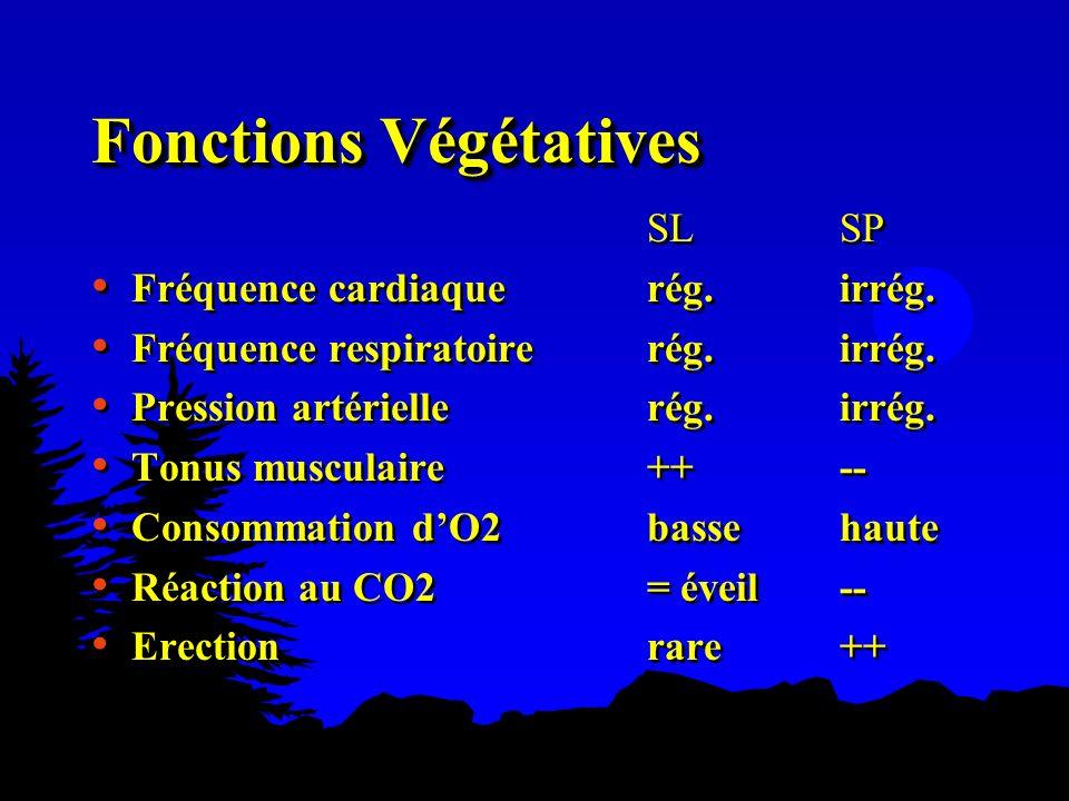 Fonctions Végétatives