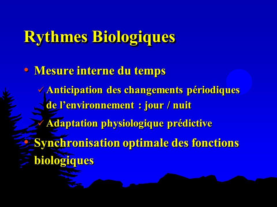 Rythmes Biologiques Mesure interne du temps