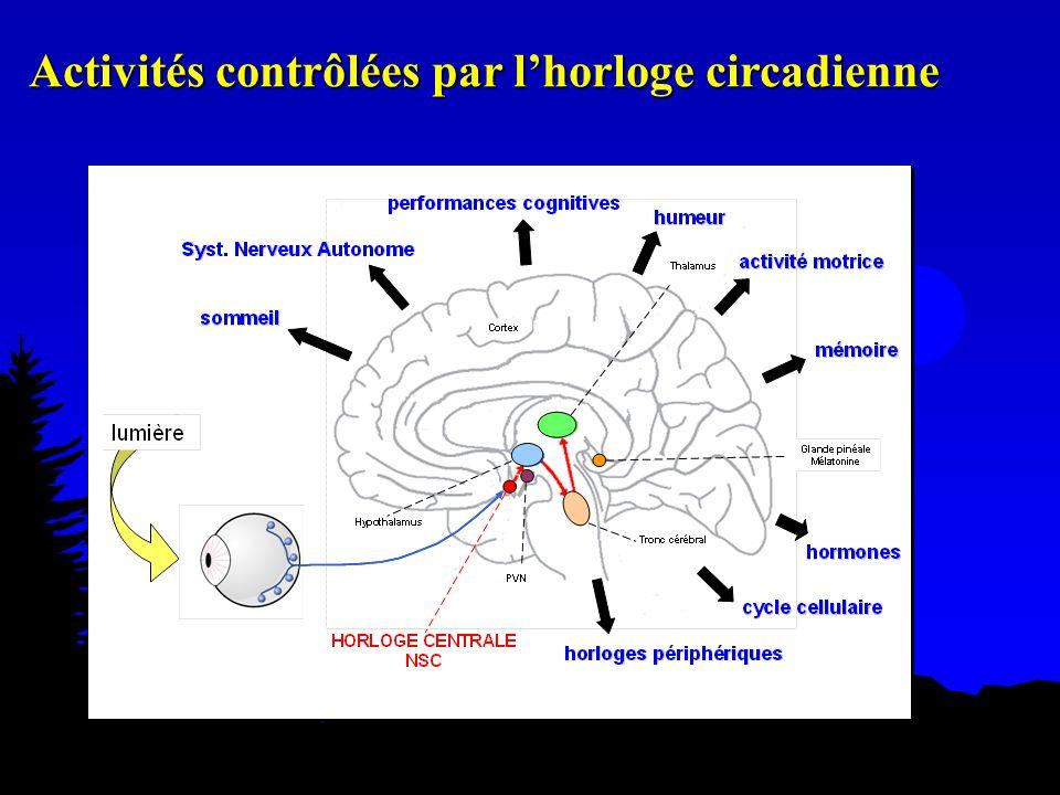 Activités contrôlées par l'horloge circadienne