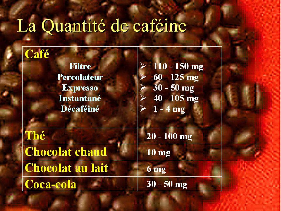 La Quantité de caféine