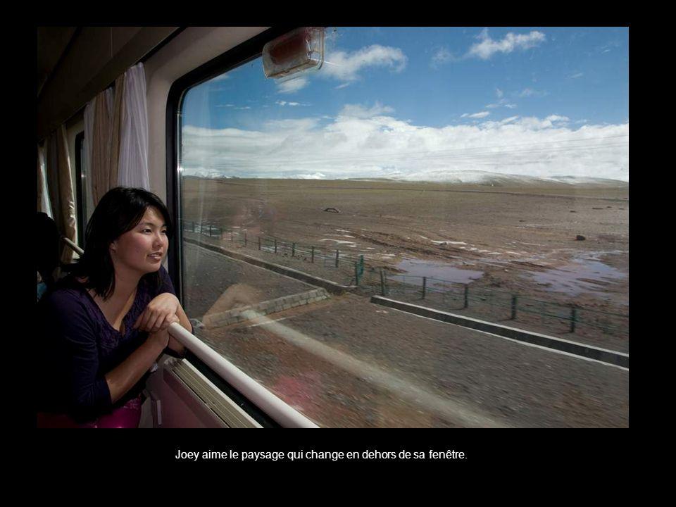 Joey aime le paysage qui change en dehors de sa fenêtre.