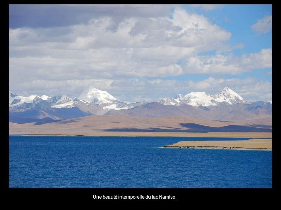 Une beauté intemporelle du lac Namtso.