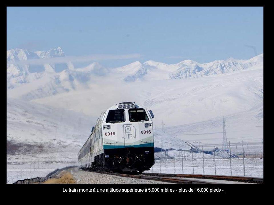 Le train monte à une altitude supérieure à 5. 000 mètres - plus de 16