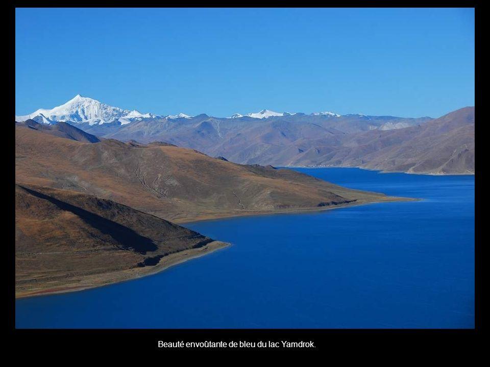 Beauté envoûtante de bleu du lac Yamdrok.